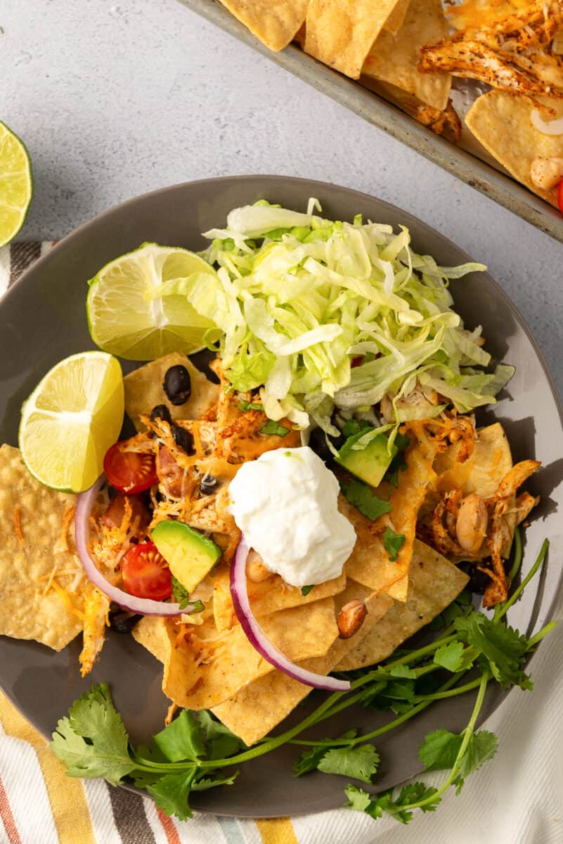 chicken nachos on plate with sour cream