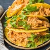 creamy crockpot salsa chicken in taco shells