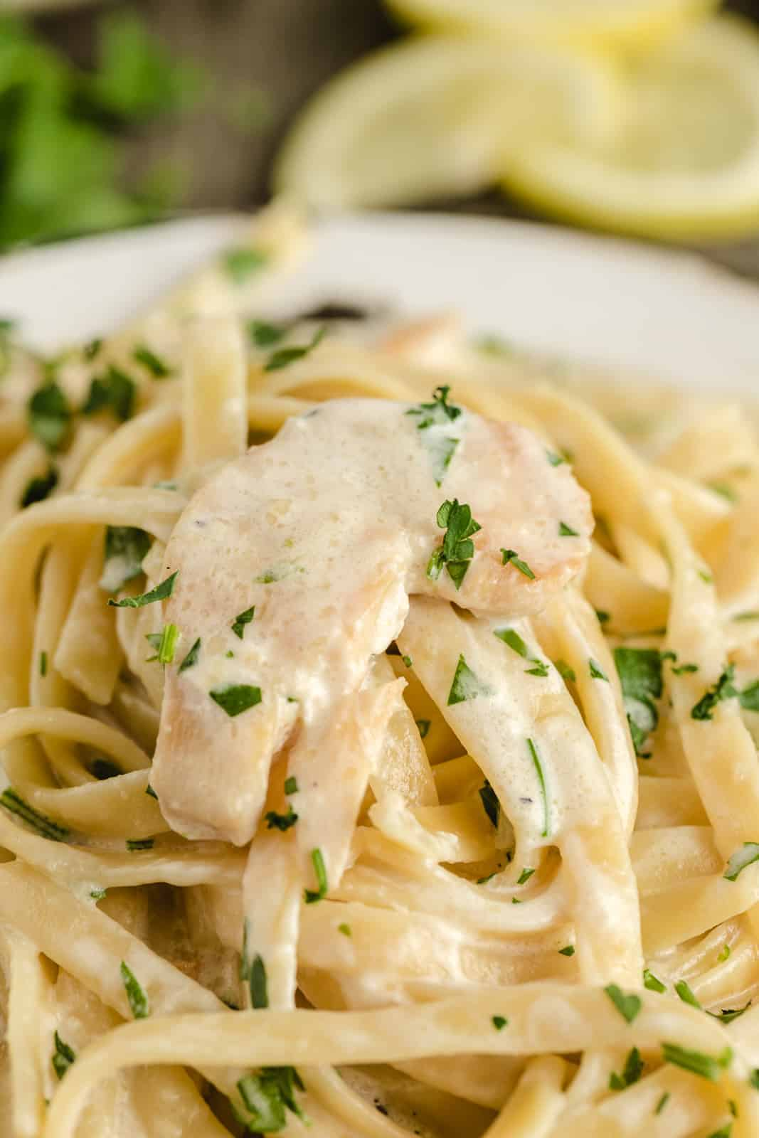up close picture of creamy chicken pasta in white sauce