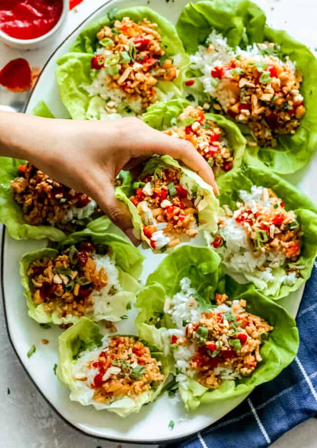 chicken lettuce wraps on platter