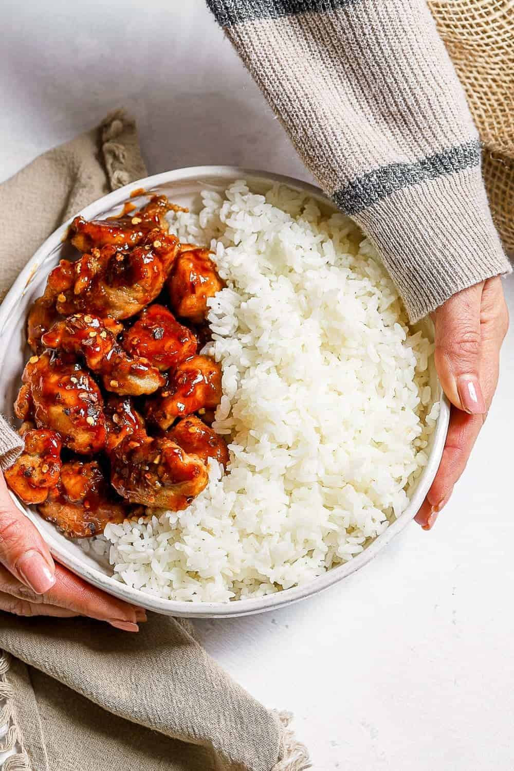 hand holding plate of chicken and rice