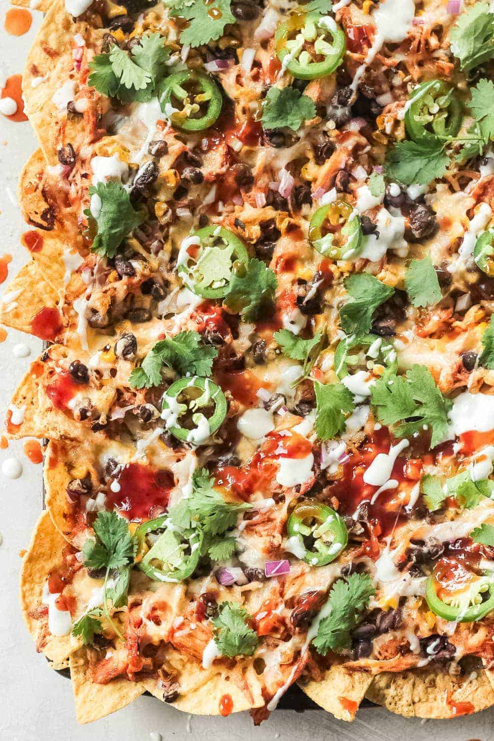 Close up of BBQ Chicken Nachos