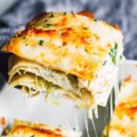 featured white chicken lasagna