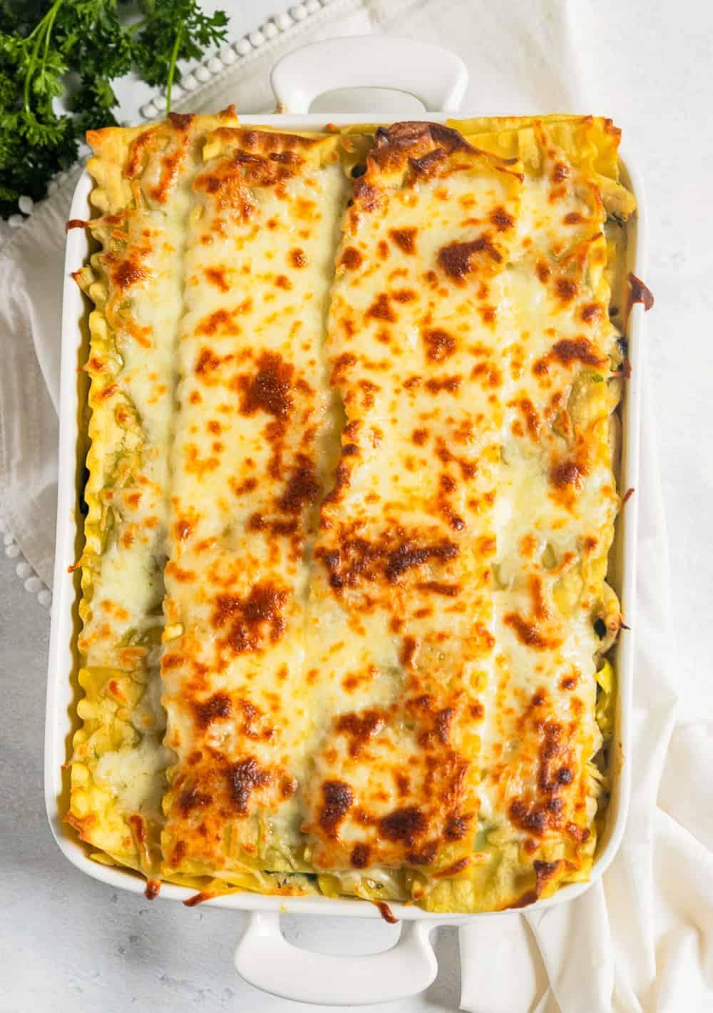 white chicken lasagna in a baking dish