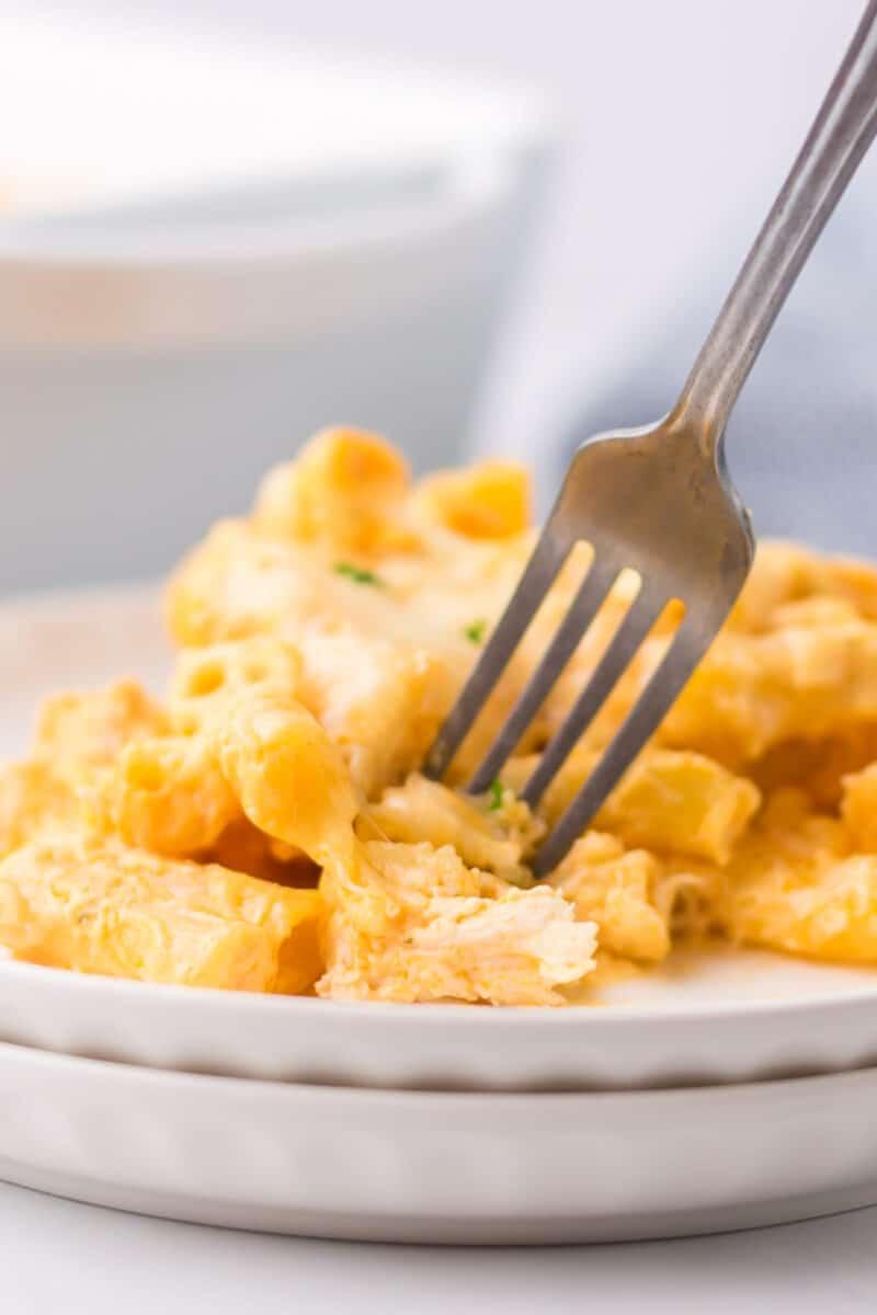 fork in dish