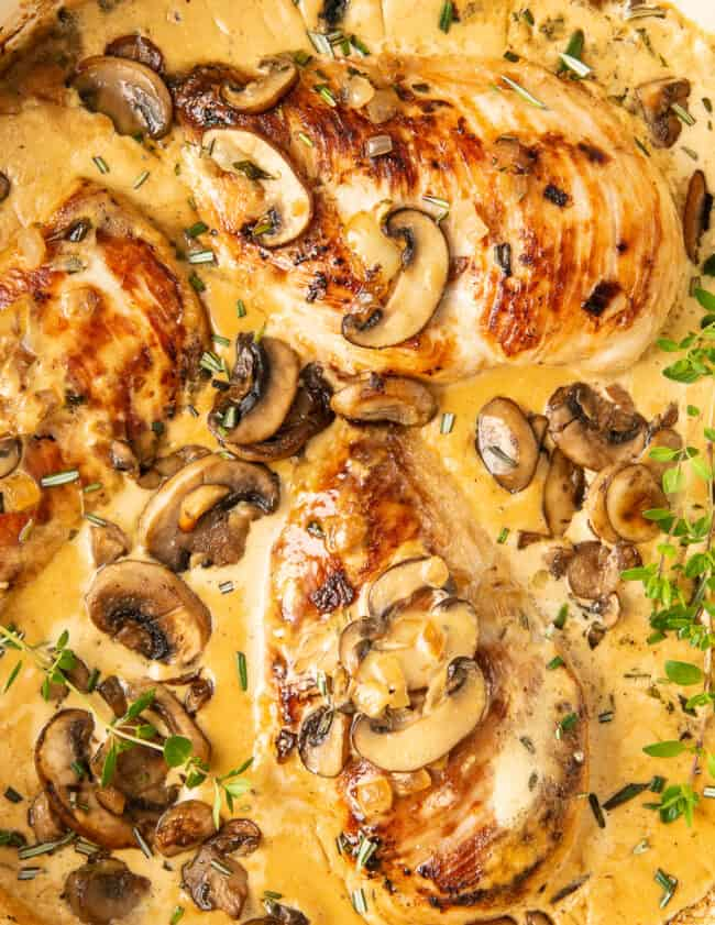 creamy mushroom chicken in pot