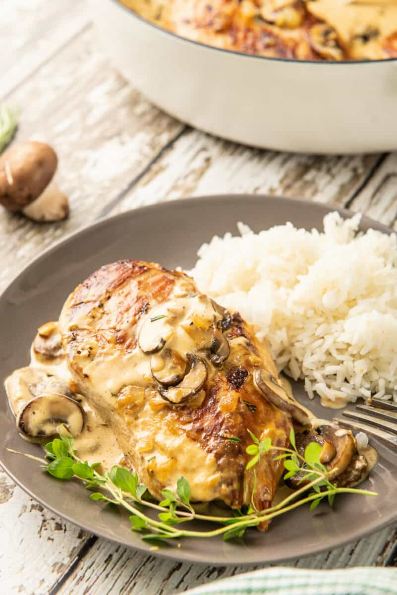 chicken breast with mushroom cream sauce with rice