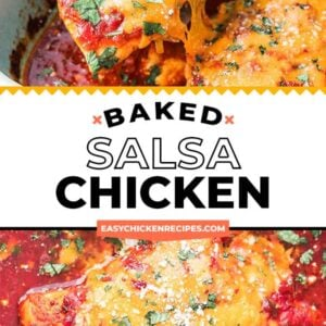 salsa chicken pinterest collage