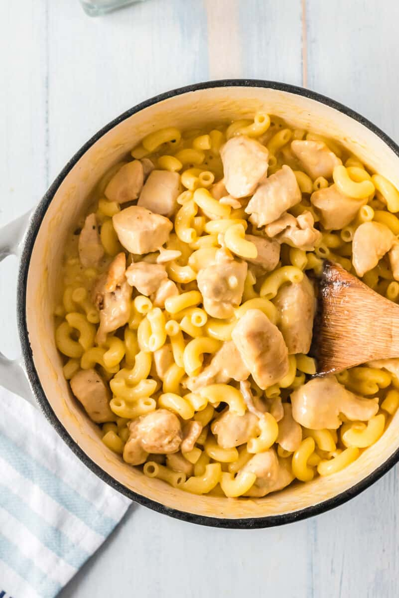 chicken mac and cheese in a large pot
