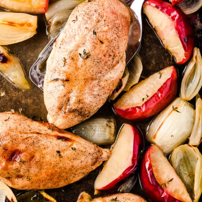 chicken breasts on sheet pan with apple slices