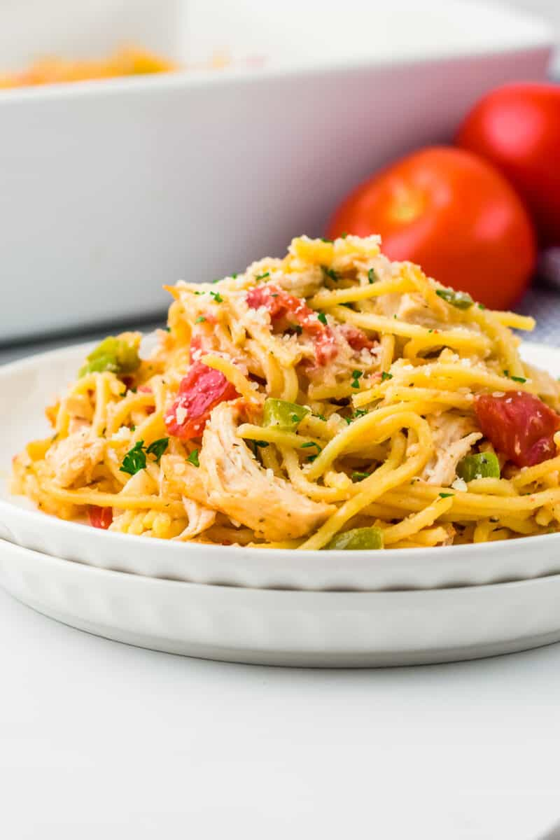 plate piled high with creamy chicken spaghetti