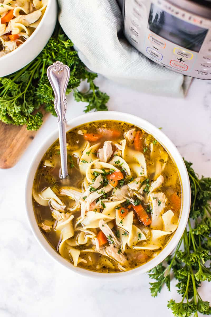 instant pot chicken noodle soup  easy chicken recipes