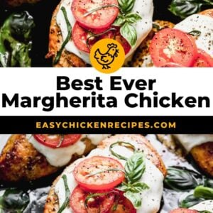 margherita chicken pinterest