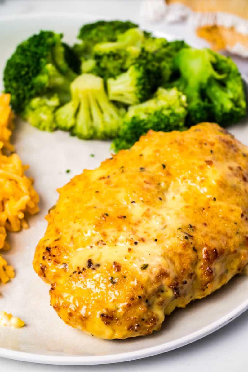 side shot of  chicken breast