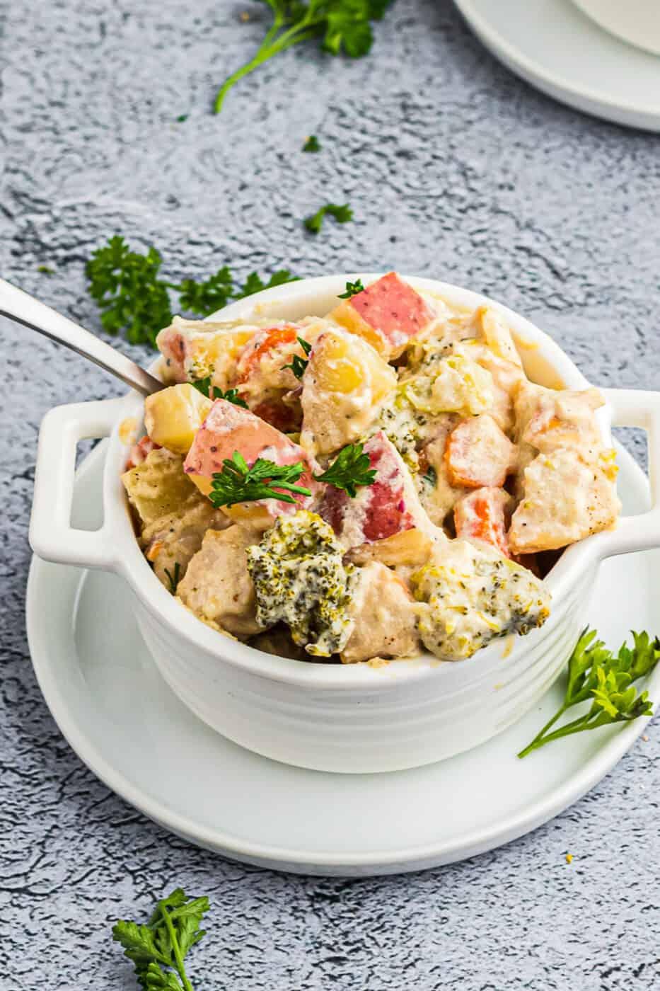 up close image of chicken stew