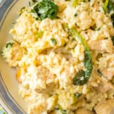 up close image of garlic chicken and rice