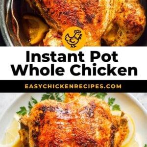 instant pot whole chicken pinterest