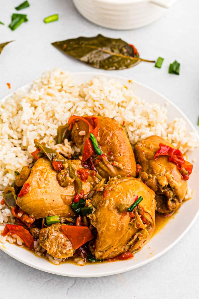 instant pot adobo chicken and rice