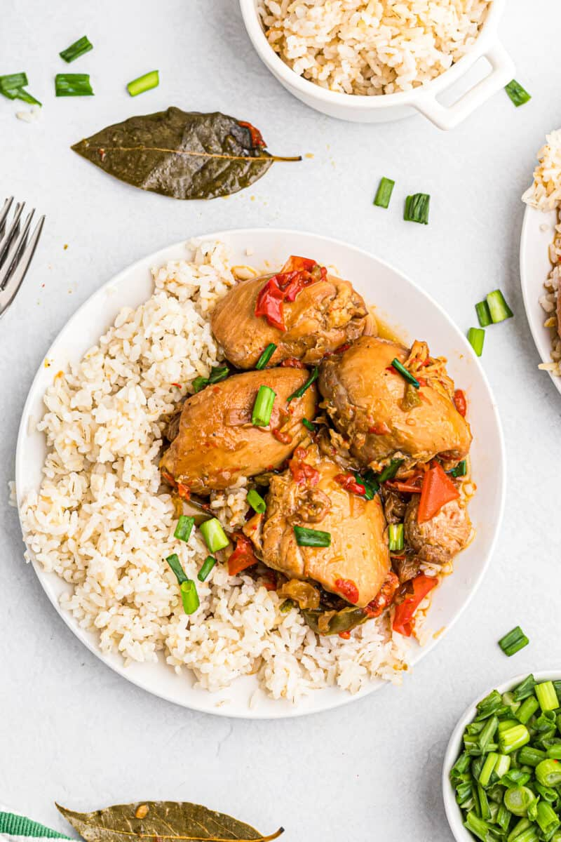 instant pot chicken adobo with rice on plate