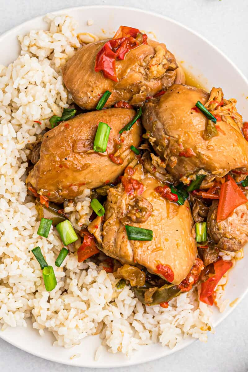 up close image of instant pot chicken adobo