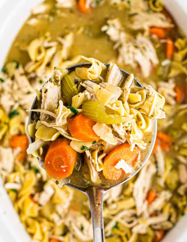 ladle in crockpot of chicken noodle soup