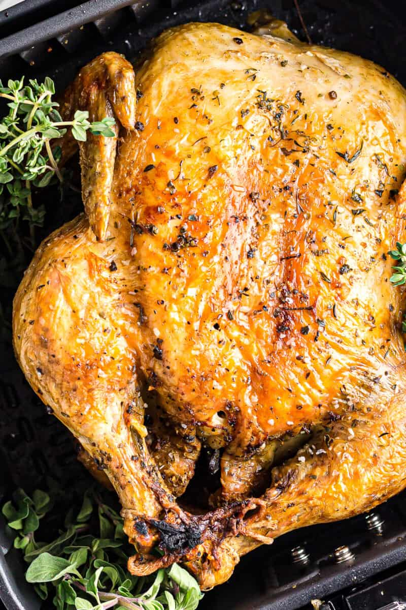 up close air fryer whole chicken in instant pot with herbs