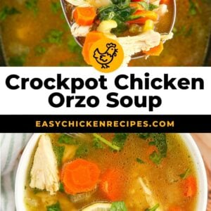 crockpot lemon chicken orzo soup pinterest collage