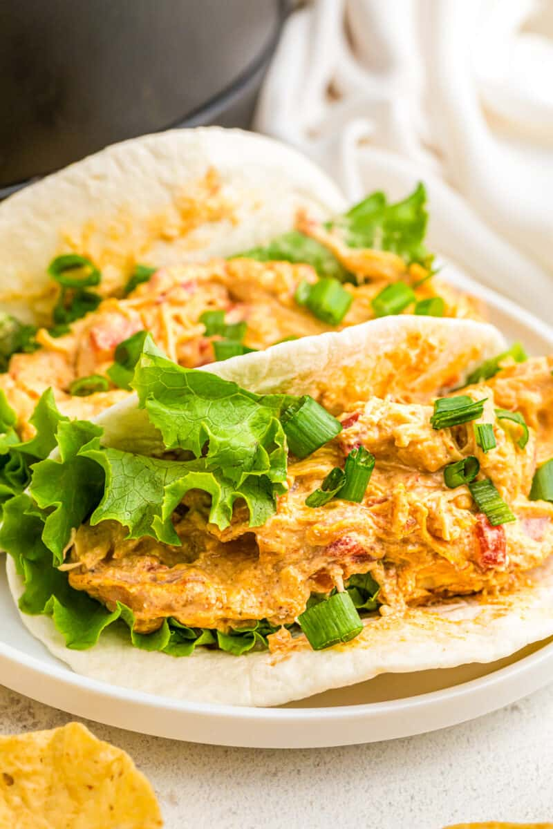 tacos made with crockpot queso chicken