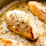 featured creamy rosemary chicken