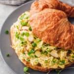 featured curried chicken salad