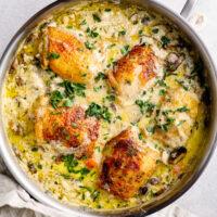 featured chicken fricassee