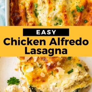chicken alfredo lasagna pinterest