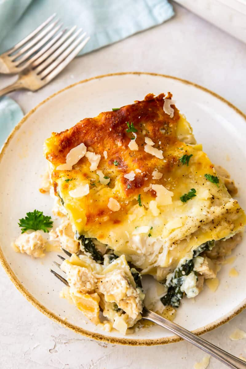 bite out of slice of chicken alfredo lasagna on white plate