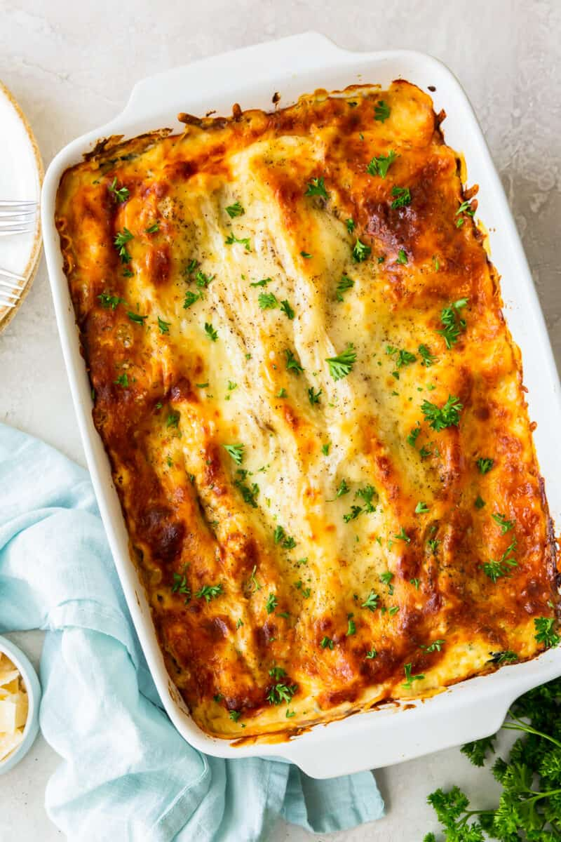 chicken alfredo lasagna in baking dish