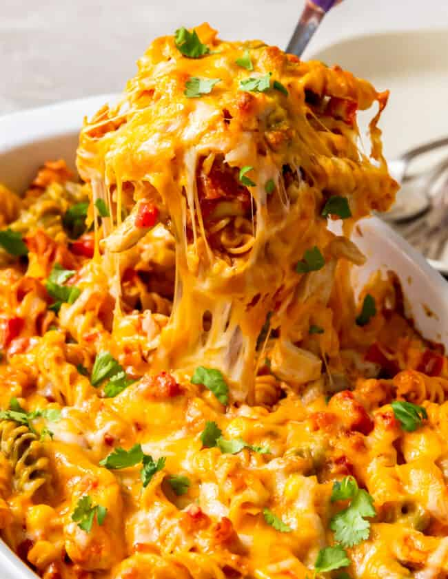scoop of chicken enchilada pasta bake