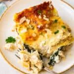 featured chicken alfredo lasagna